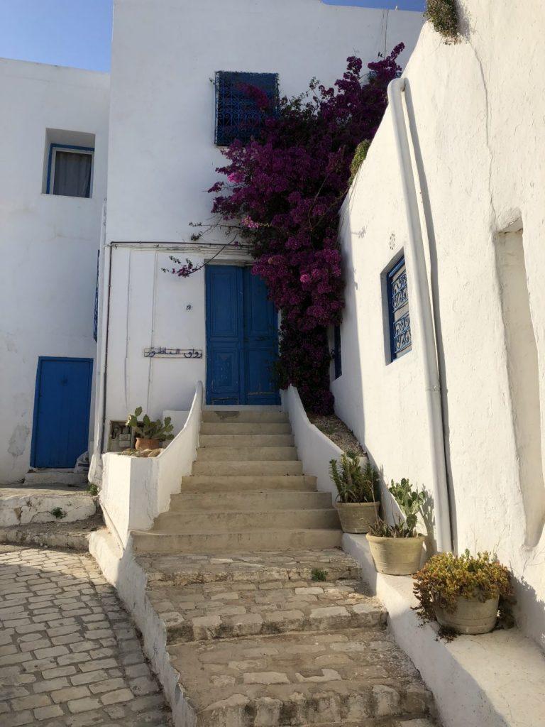 Tunesië mijn fotoverslag