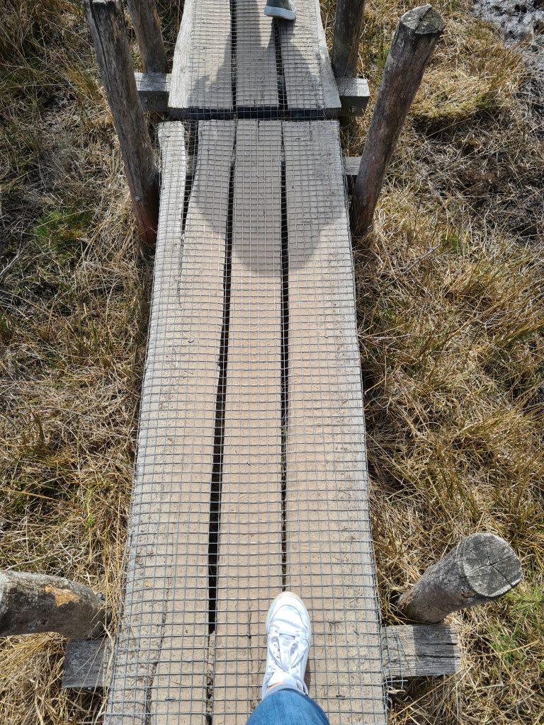 Wandeltip: Plankenpad in Dwingelderveld