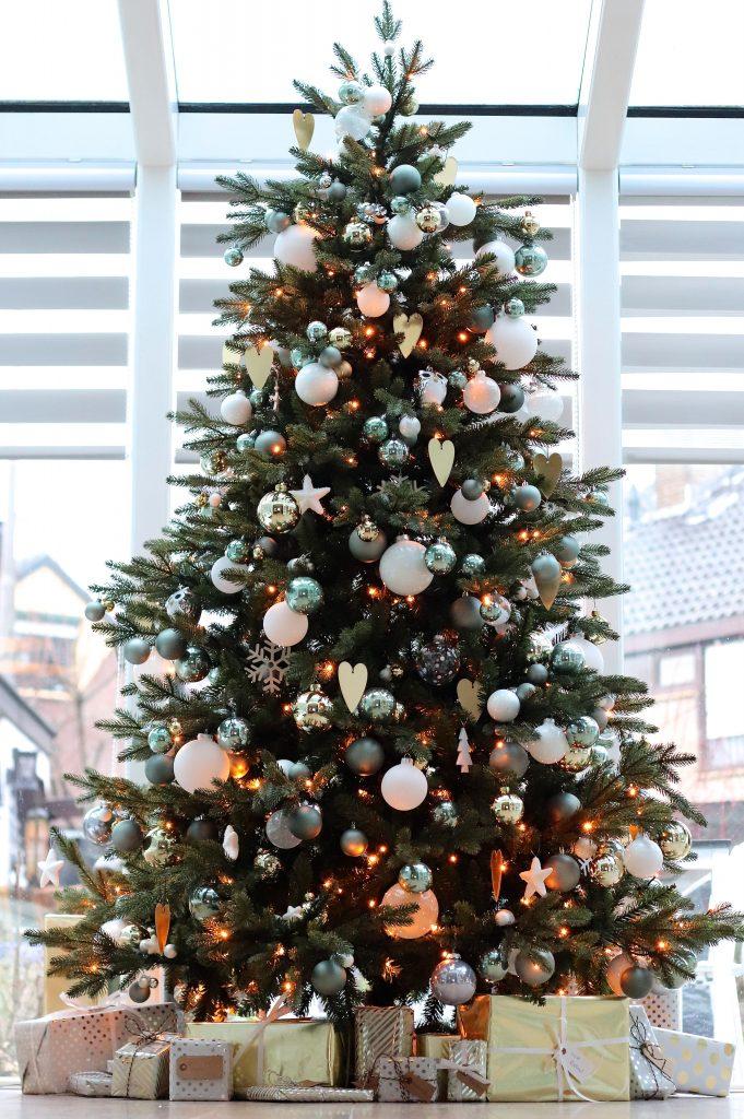 Elke kerstboom heeft een verhaal (de kerstbomen van lezeressen)