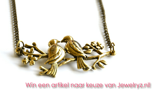 Win een artikel naar keuze van Jewelryz.nl!