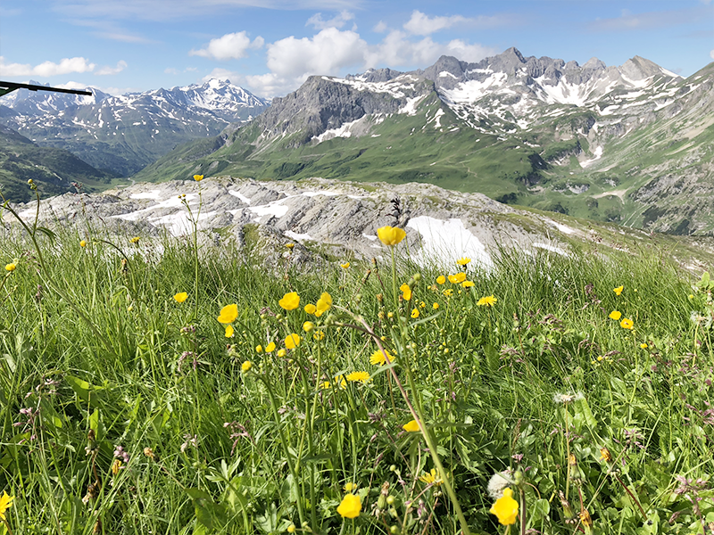 Ontdek Oostenrijk: de mooiste plekken in de Vorarlberg