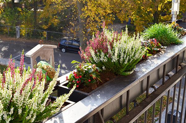 DIY: Je tuin/balkon winterklaar maken