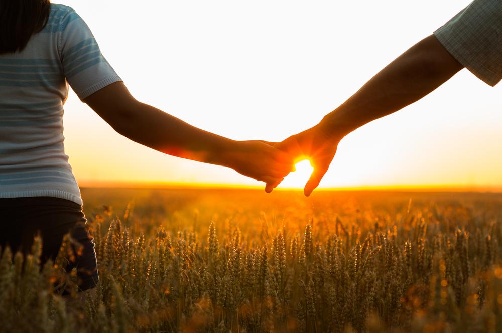 Boer zoekt vrouw praat – alle boeren hebben gekozen
